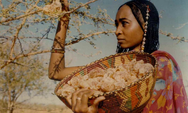 gum arabic woman