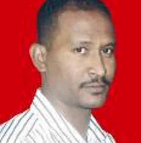 محمد عبدالماجد