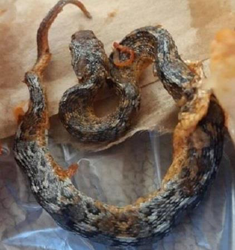 Photo of تفاصيل العثور على ثعبان داخل وجبة مندي بالسعودية