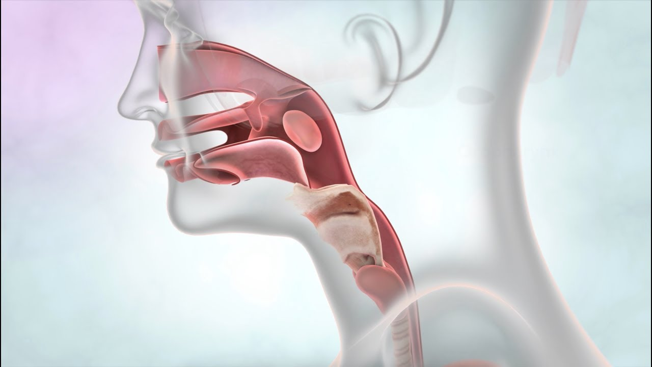 Photo of الأعراض الرئيسية لالتهاب اللوزتين ومتى يكون خطيرا؟
