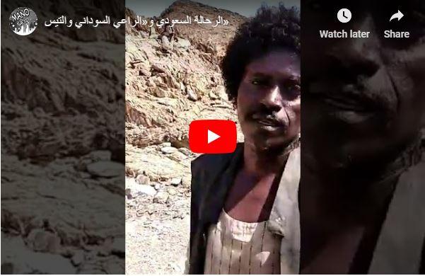 Photo of راعي سوداني يذهل السعوديين بسبب هذا الفيديو..ورجل أعمال يتبرع له بالحج ولأسرته